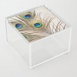 Exquisite Renewal Acrylic Box