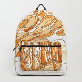 Eno River 35 Backpack