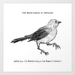 Mockingbird – State Bird of Arkansas Art Print