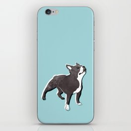 Boston Terrier 2 iPhone Skin