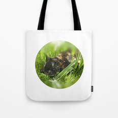 wild cat III Tote Bag
