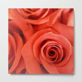 Pink Rose 10 Metal Print