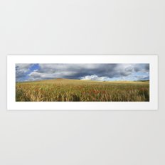 Poppies under the clouds Art Print