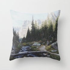 Rocky Mountain Creek Throw Pillow