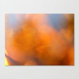 Untitled 9 2009 Canvas Print