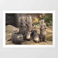 otters Art Prints featuring Otters  by Rob Hawkins Photography