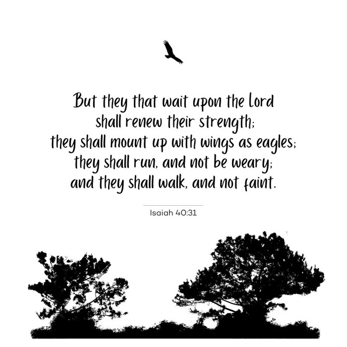 Mount up with wings as eagles Comforters