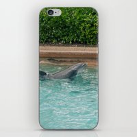 dolphins iPhone & iPod Skins featuring Dolphins by Nick De Clercq