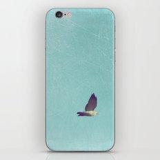 Crossing Pale Blue Skies iPhone & iPod Skin