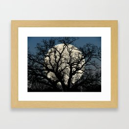 Tree Full Moon Midnight Blue Sky Cottage Decor Art A474 Framed Art Print