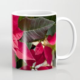 Red and Green Poinsettia Photography Print Coffee Mug