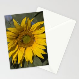Lively Sunflower Stationery Cards