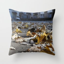 COLOR FLIGHT Throw Pillow