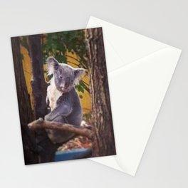 Kozy Koala 2 Stationery Cards