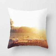 Pig Dust Throw Pillow