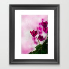 Pink Cyclamen Impressions Framed Art Print