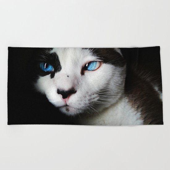 Cat siamese blue eyes Beach Towel