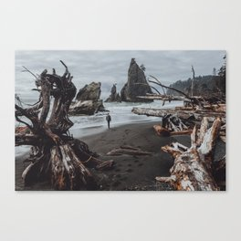 Olympic Coastline Canvas Print
