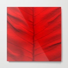 Poinsettia's leaf Metal Print