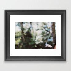 Warm Summer Day Framed Art Print