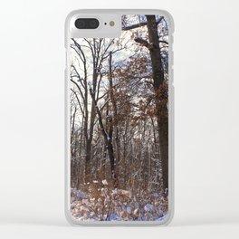 Shrouded Heart Clear iPhone Case