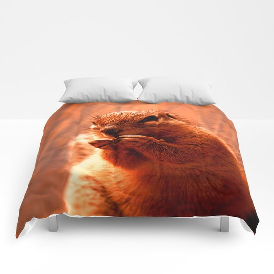 Ground squirrel Comforters
