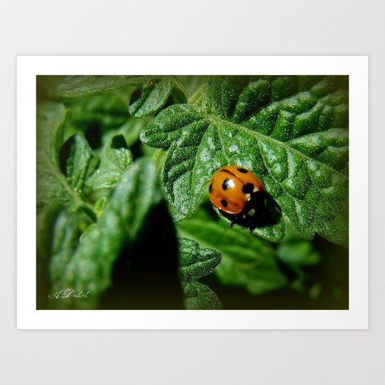 Ladybug's Journey Art Print