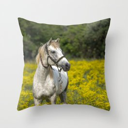 Gray Horse in a Field of Yellow Mustard Throw Pillow