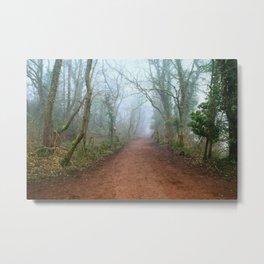 Foggy Woodland Metal Print
