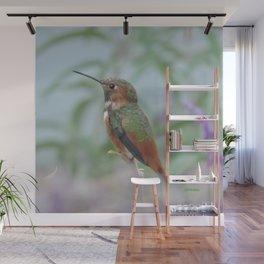 Allen's Hummingbird Sentinel Wall Mural