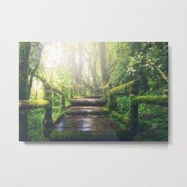 Green Mossy Forest Path Bridge Metal Print
