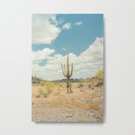 Old West Arizona Metal Print