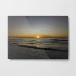 Birds fly through sunset Metal Print