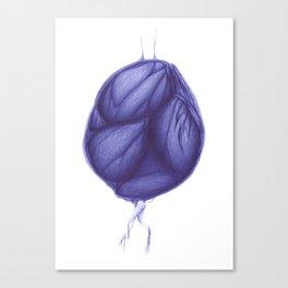 Vitae Sanctorum XXIX Canvas Print