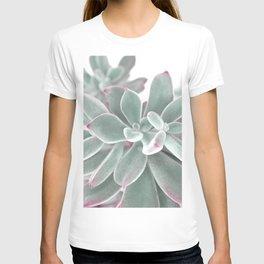 plants succulents and velvet T-shirt