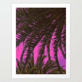 Neon Pink Sky And Palm Leaves Art Print