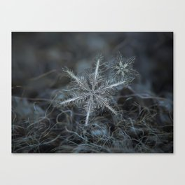 Real snowflake photo - Stars in my pocket like grains of sand Canvas Print