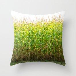 Corn Field 25 Throw Pillow