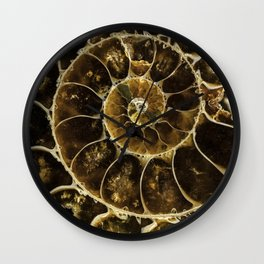 Detailed Fossil Wall Clock