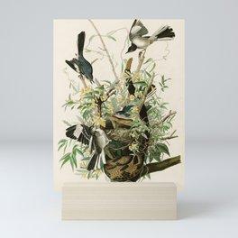 Mocking Bird - John James Audubon's Birds of America Print Mini Art Print