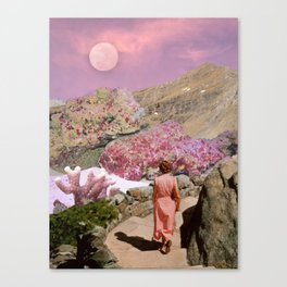 Path to pink moon Canvas Print