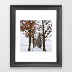 oaks avenue Framed Art Print