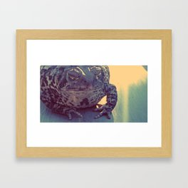 Leeper Framed Art Print
