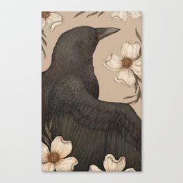 The Crow and Dogwoods Canvas Print