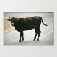 bull Canvas Prints featuring BULL by Azniv's Photos