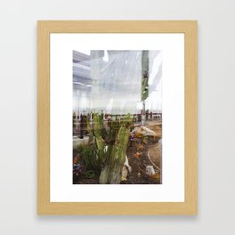 Cactus Ocean Abstraction Framed Art Print