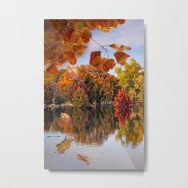 Autumn in Texas Metal Print