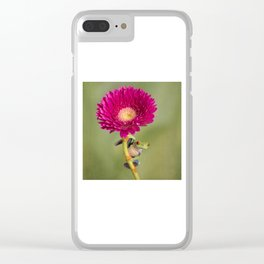 Red Eyed Tree Frog on a Flower Clear iPhone Case