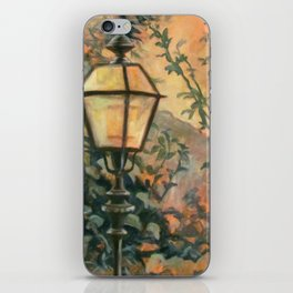 In A Lovely Place iPhone Skin