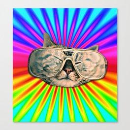 GLASSES CAT Canvas Print